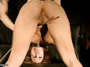 Brunette Andy Brown sucking like it aint no thing in blowjob action with hot...