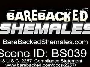 Beautiful Shemale Having Bareback Scene