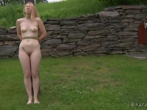 blondie goes for a walk in the backyard