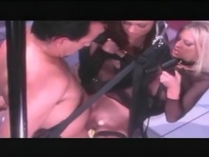 Krystal Steal in a sex swing