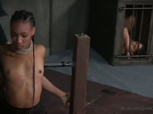 Submissive ebony nympho Nikki Darling is no stranger to BDSM