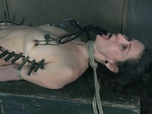 Lots pegs are used to make submissive pale hoe Paintoy Emma moan